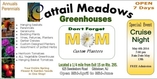 Cattail Meadows Cruise add