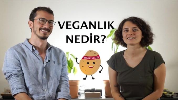 vegan patates kanalımız