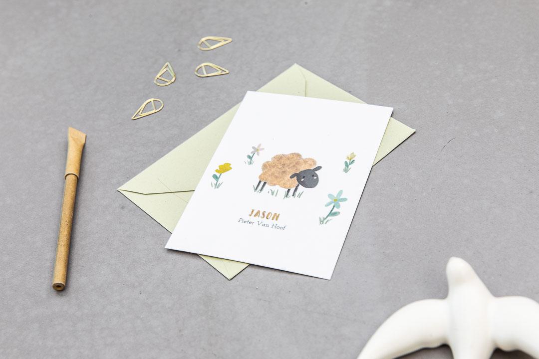 geboortekaartje op maat schaap dieren pastel illustratie grafisch ontwerp oh deer design