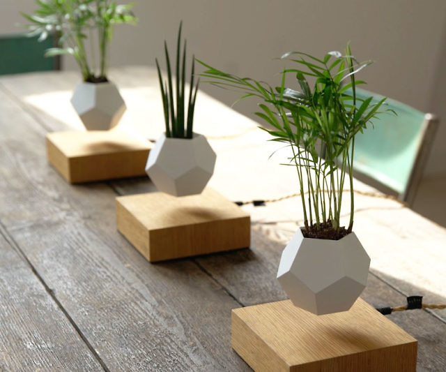 Get Some Levitating Plants For Your Office  OhGizmo