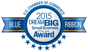 B2B CFO wins Dream Big Award