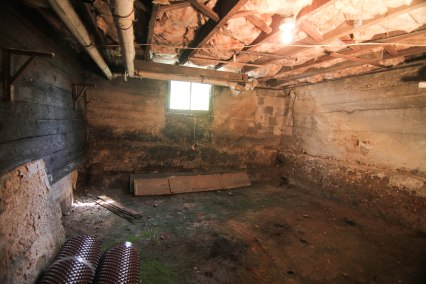 Wet  basement with mold