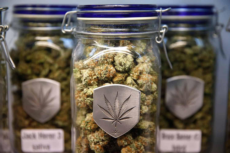 Marijuana Filled Glass Jars