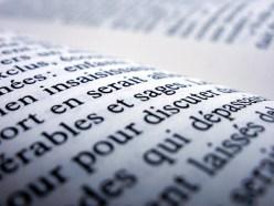 French book possessive pronouns