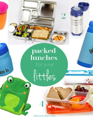 My Favorite Things for Packed Lunches for Littles | Oh Lovely Day