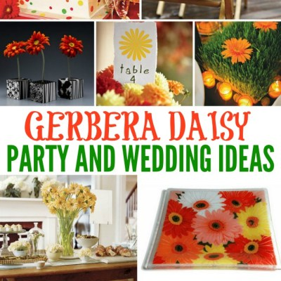 Gerbera Daisy Party Inspiration