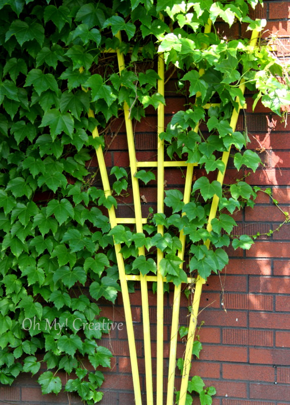 Yellow Garden Trellis - Oh My! Creative