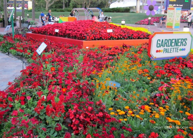 Flower Color Palette Epcot International Flower and Garden Festival  |  OHMY-CREATIVE.COM