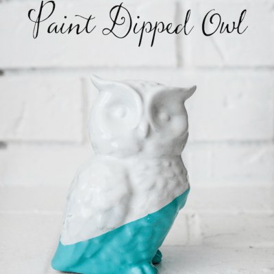 Paint Dipped Owl