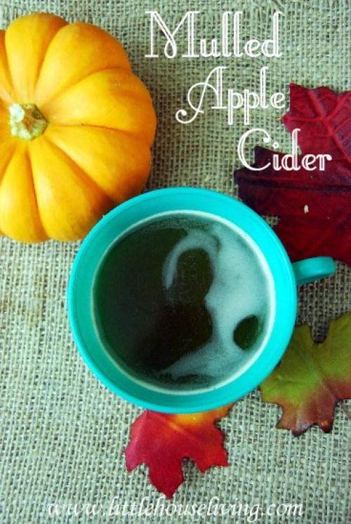 How to make Mulled Apple Cider