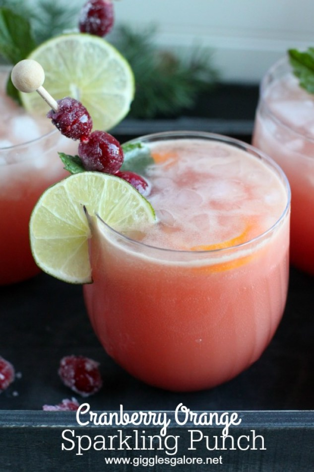 Cranberry Orange Sparkling Punch Giggles Galore