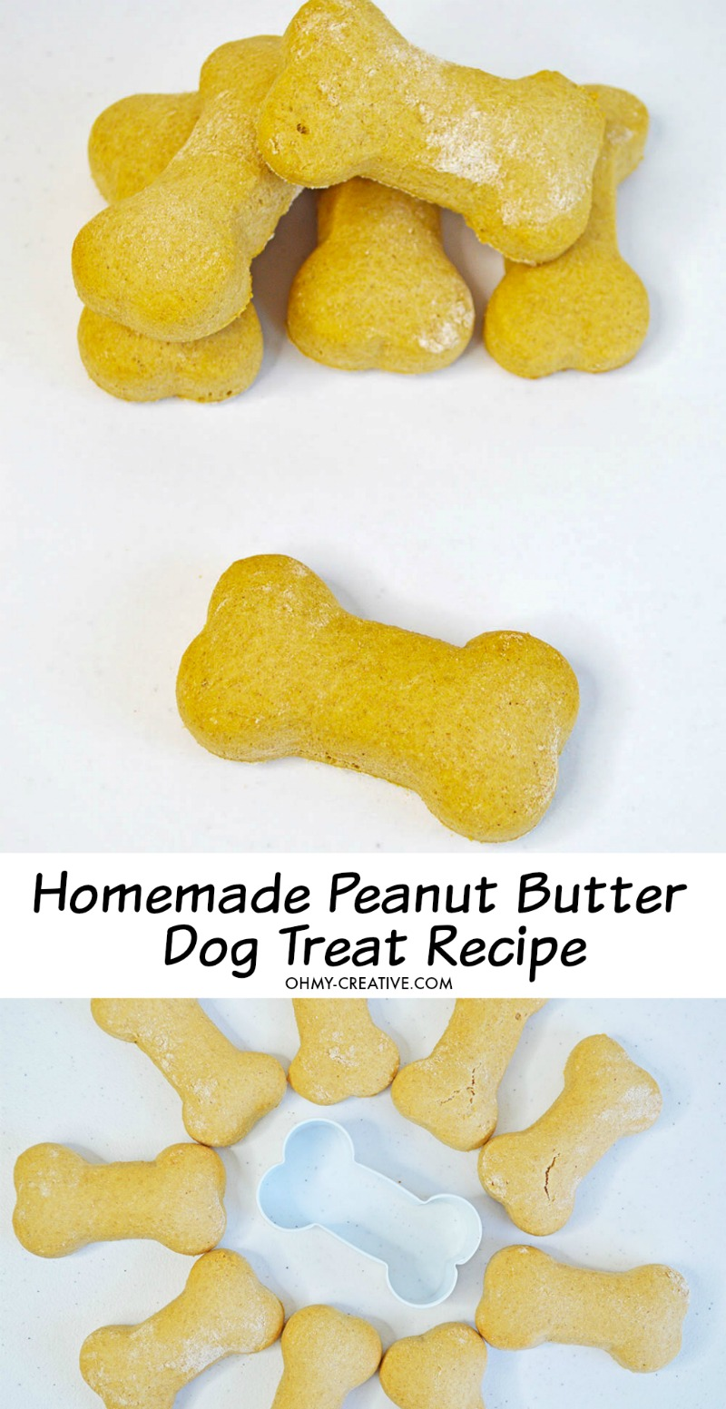 Make our delicious Peanut Butter Dog Treats Recipe as a homemade healthy treat that your dogs will love! OHMY-CREATIVE.COM #dogtreats #dogtreatsrecipe #homemadedogtreats #peanutbutterdogtreats #easydogtreatsrecipe