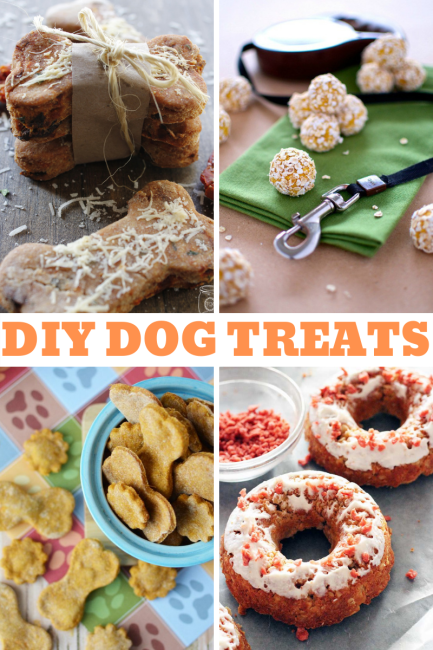 A collection of homemade dog treat recipes