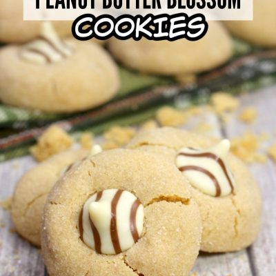 Hugs Peanut Butter Blossom Cookie Recipe