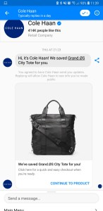 chatbot messenger cole haan