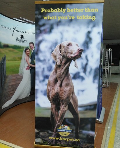 Bamboo-Roll-up-Banner