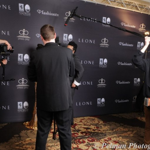 Step and repeat logo media wall - fabric backdrop