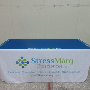 Printed fitted table cover
