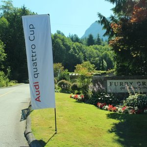 Printed Flags for Audi