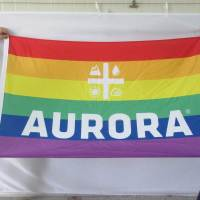 Logo pride flag