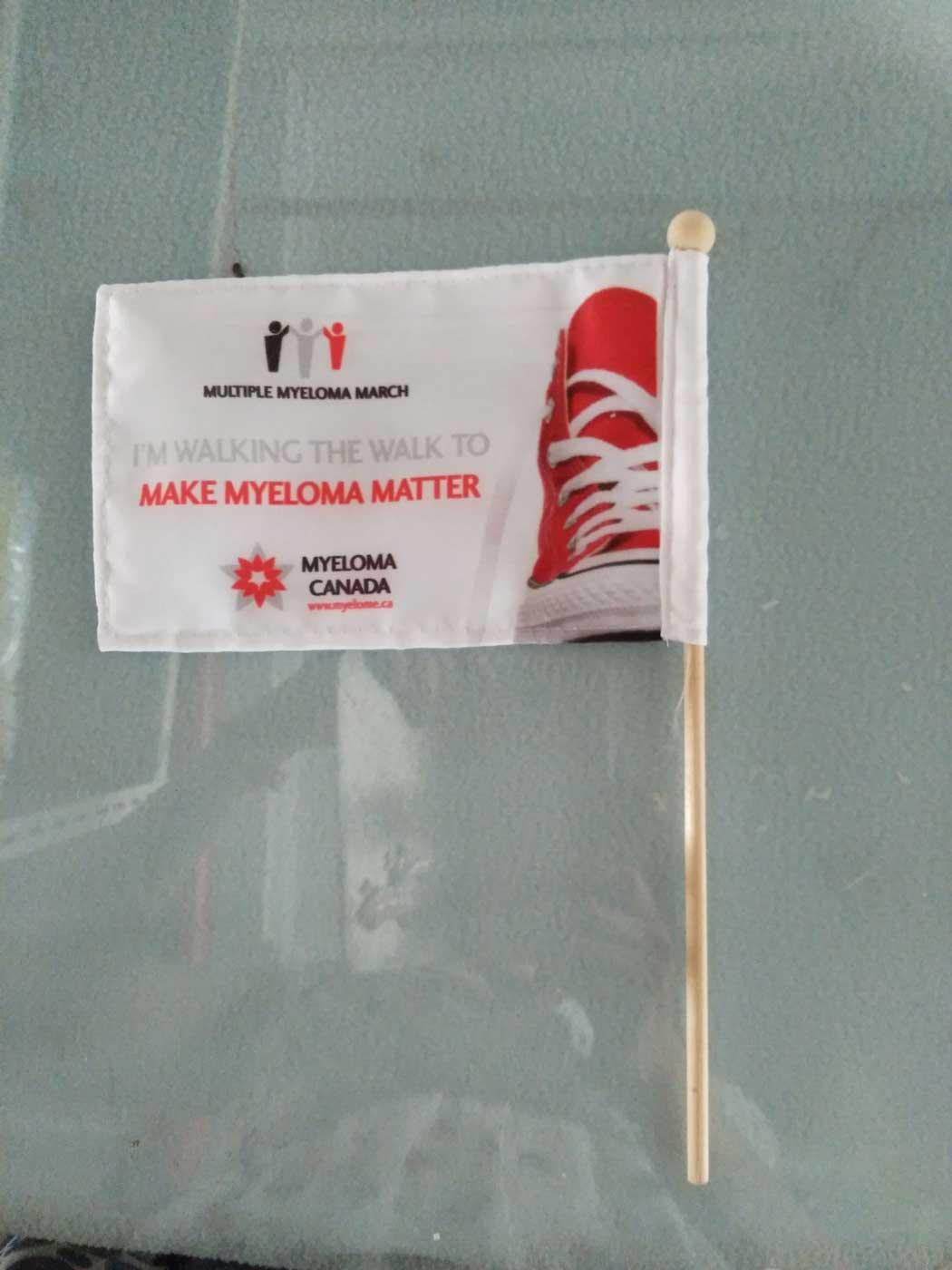 Custom Printed Hand Flags - Stick Flags - Parade Flags