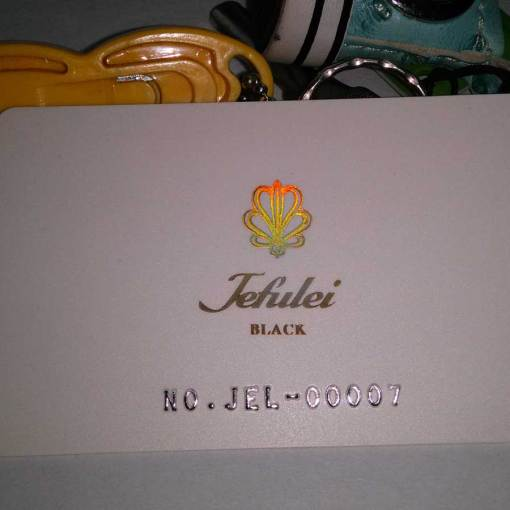 Business Card with Holographic Stamp Foil and embossing