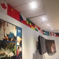 Wall Flag Printing