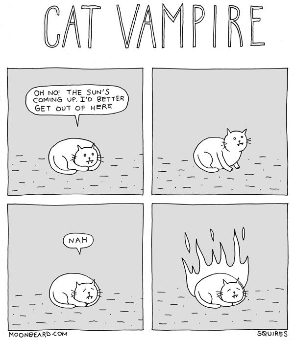 Cat Vampire
