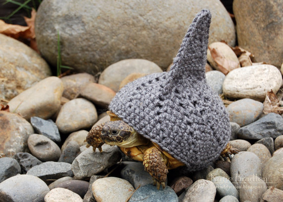 PATTERN for shark fin cozy for tortoises
