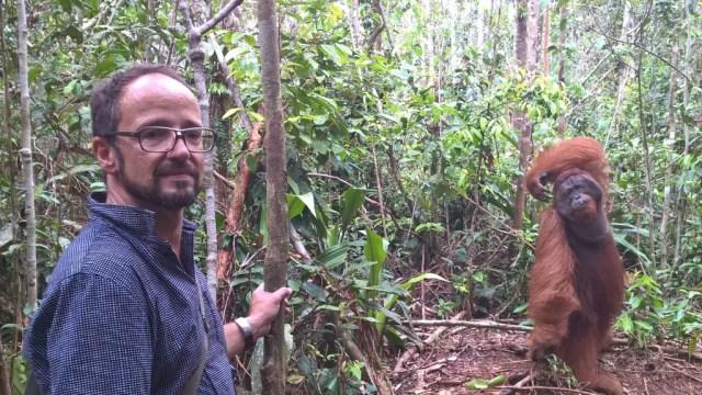 Zwei Poser im Dschungel