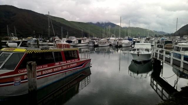 Marlborough Sounds und die nördliche Westküste: Wassertaxi im Hafen von Havelock