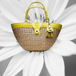 Stylish Handbags for Spring/Summer
