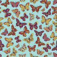 Photo Wallpaper   Butterfly Wall Mural Wallpaper   ohpopsi