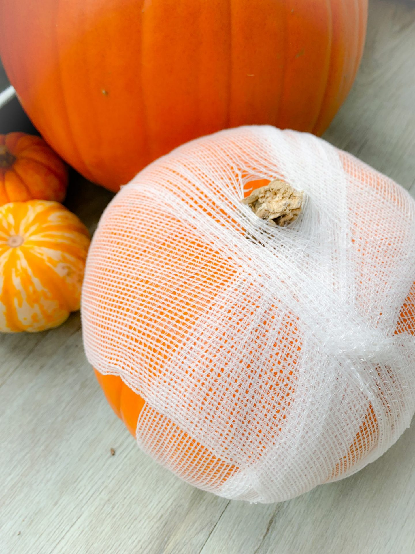 Mummified carve free pumpkin with spiders