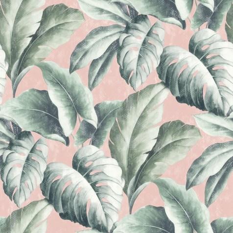 tropicana-floral-leaf-wallpaper-pink-p6117-17689_image
