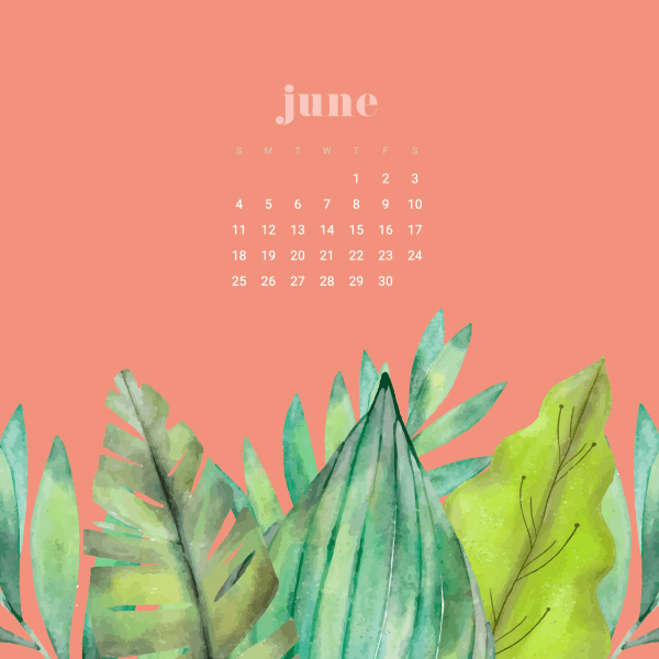 FREEBIES  //  JUNE DESKTOP WALLPAPER CALENDARS
