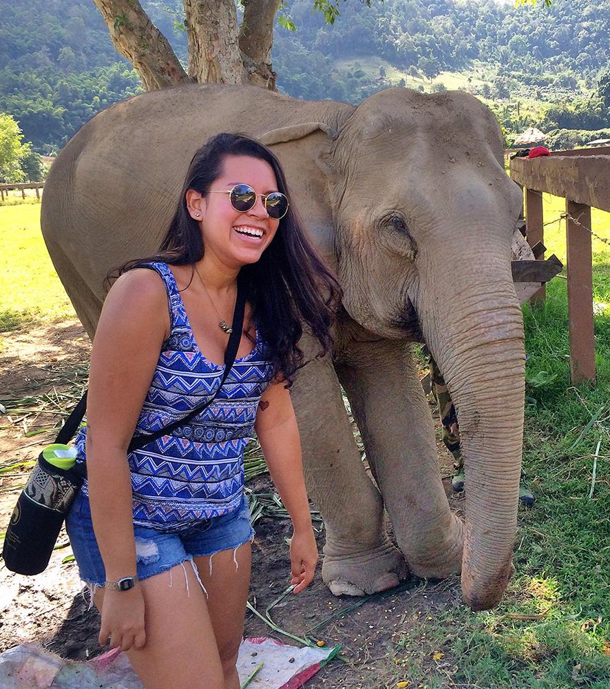 Conhecendo os elefantes no Elephant Nature Park