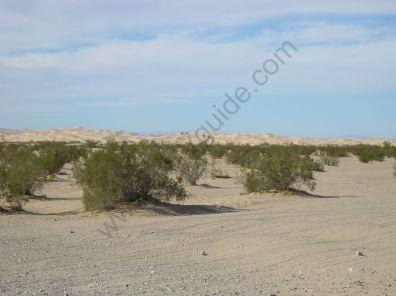 glamis_sand_dunes-002