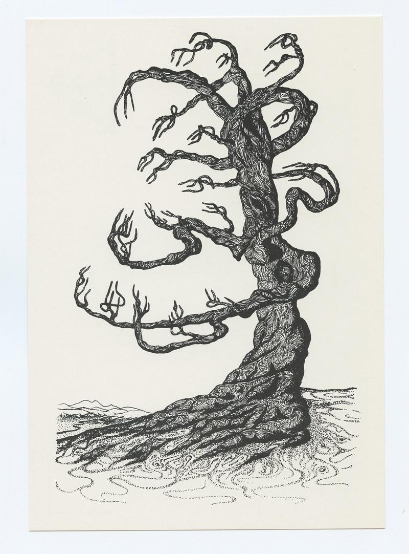 Jacaeber Kastor Postcard DEAD TREE Psychedelic 1977