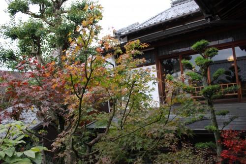 迷路みたいな施設。例えば、この中庭、実は2階に造られているんです
