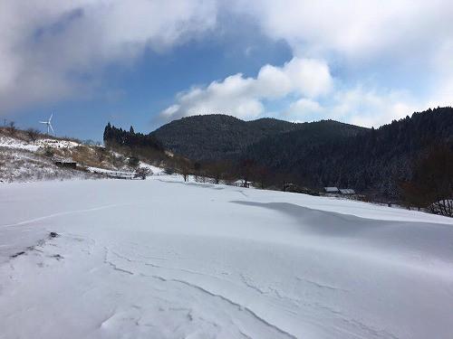 今朝の写真です。本日雪が降り続くと、もっと積雪に。