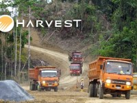 Harvest Natural Resources – Day Three Breakout Notes