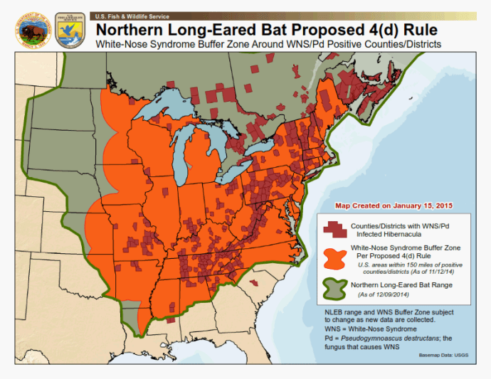 Northern Long-Eared Bat Proposed Buffer Zone