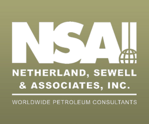 NSAI Adds New Delhi To Oil and Gas Property Evaluation Seminar Lineup