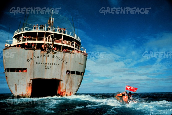 Greenpeace activists protest at the stern of whaling factory ship. (Greenpeace Witness book page 48-49)  (Greenpeace Changing the World page 11 similar photo)