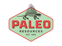 Paleo Resources announces results from Dorn Prospect Well, Polk County, Texas