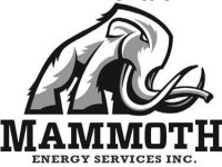 Mammoth Energy Announces Timing of 4Q and Full Year 2019 Earnings Release