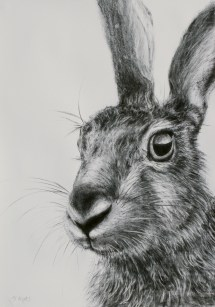 jm hare drawing 6 oil & water