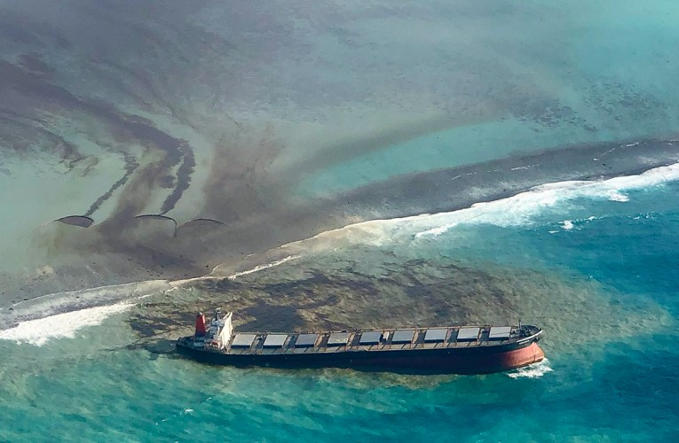 WWF Concerned Over Increased Marine Accidents in the Southwestern Indian Ocean