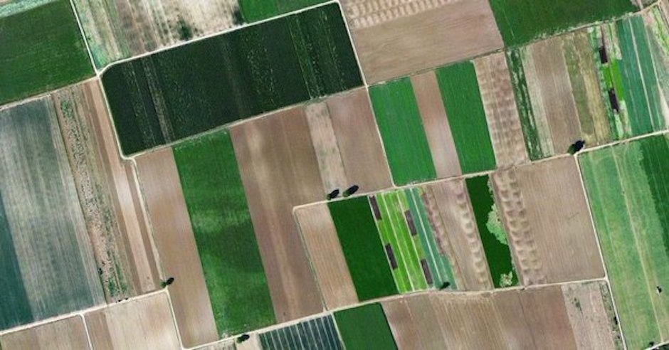 Atfarm app agricultores llega México y es gratis